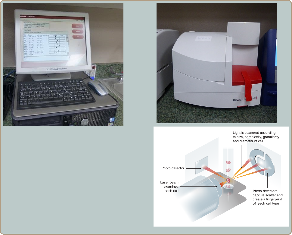 complete blood count machine